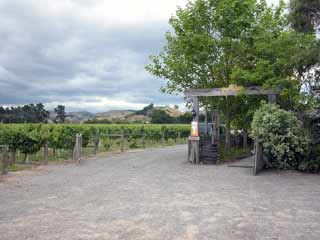 Crab Farm Winery & Vineyard Restaurant
